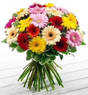 Где в самаре купить цветы недорого выбор и доставка цветов по липецку